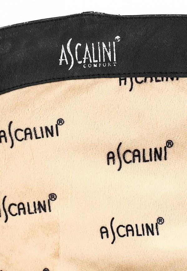 Сапоги на плоской подошве Ascalini CE14014: изображение 10