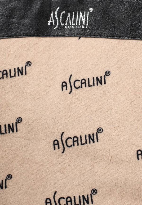 Женские сапоги Ascalini CEB14014: изображение 5