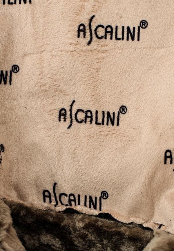 Женские сапоги Ascalini CE17072: изображение 5