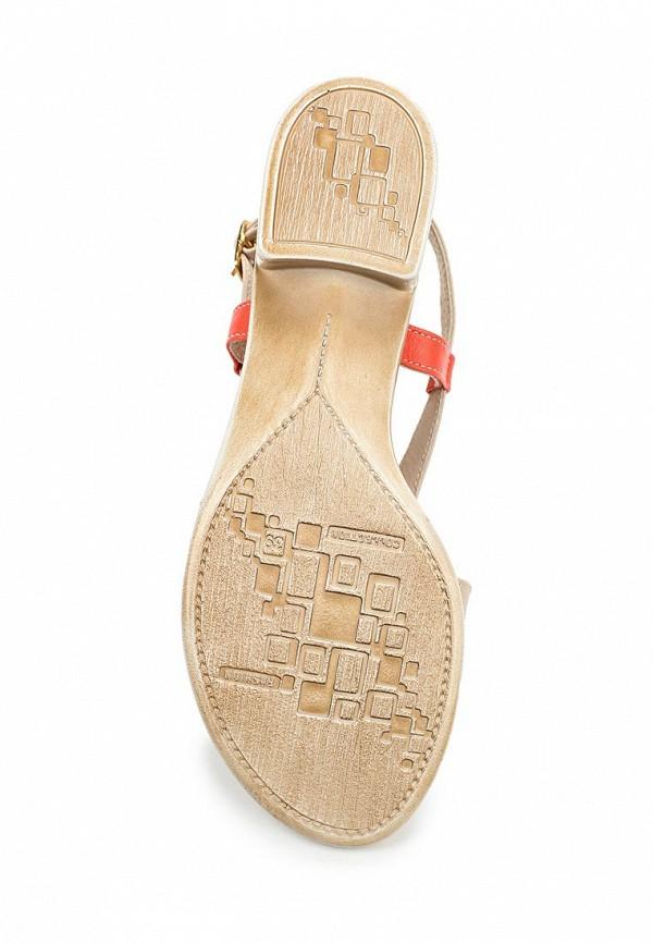 Женские сандалии Ascalini 579верх/230 низ: изображение 3