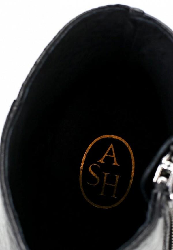 Ботильоны на каблуке Ash (Аш) AMBER: изображение 14
