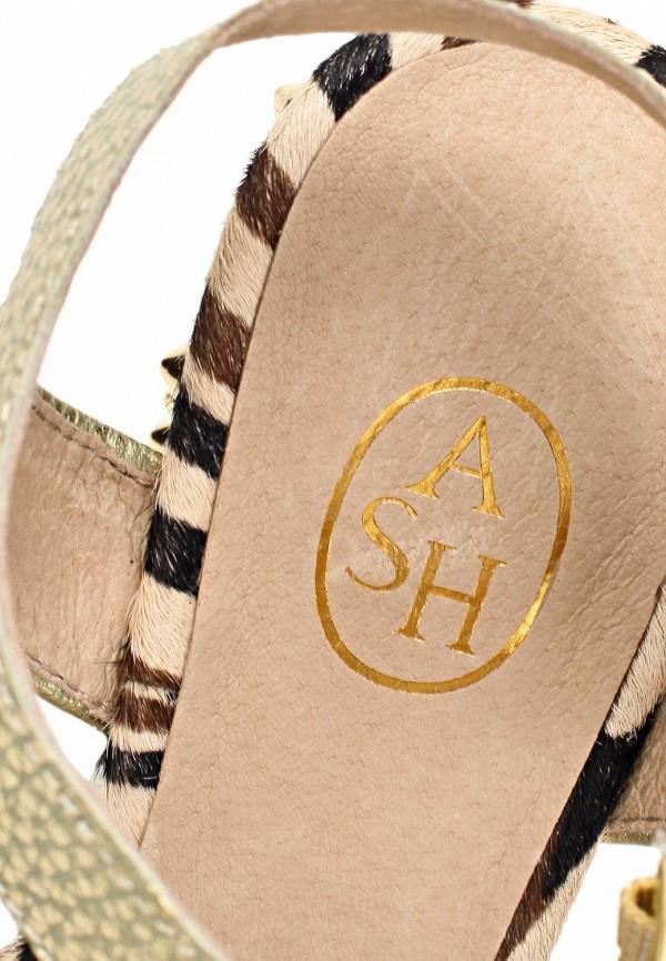 Босоножки на каблуке Ash (Аш) BEAUTY BIS: изображение 14