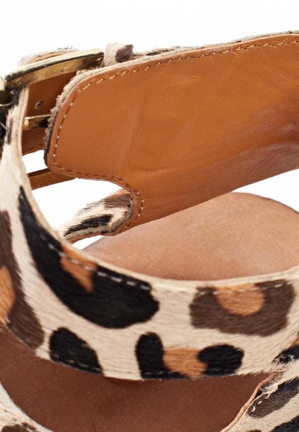 Женские сандалии Ash (Аш) MAEVA: изображение 14
