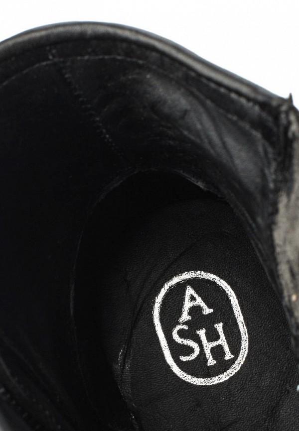 Женские сапоги Ash (Аш) TATUM: изображение 5