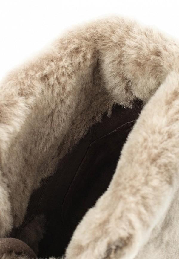Женские кеды Ash (Аш) BRENDY  FUR (FW14-S-: изображение 5