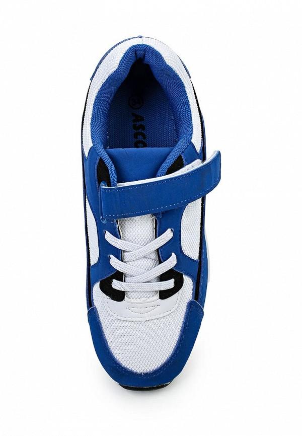 Кроссовки для мальчиков Ascot (Аскот) SJ 119I Maxim: изображение 4
