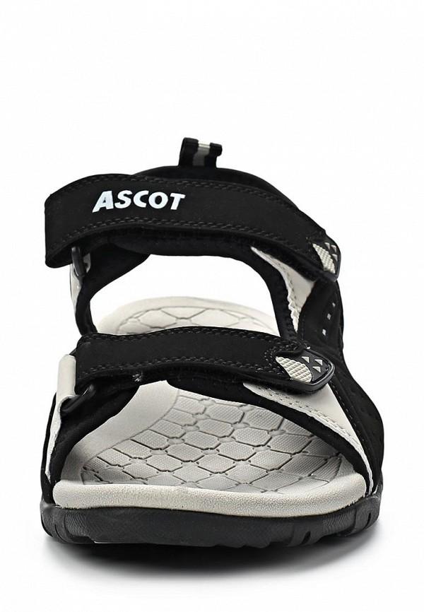 Мужские сандалии Ascot SL 9170 PORCUPINE: изображение 6