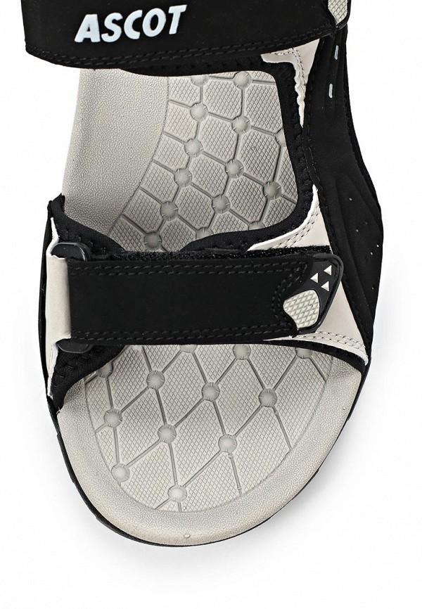 Мужские сандалии Ascot SL 9170 PORCUPINE: изображение 10