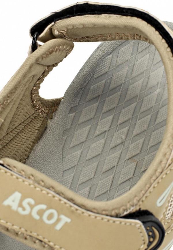 Мужские сандалии Ascot SL 9402 CRAB: изображение 11