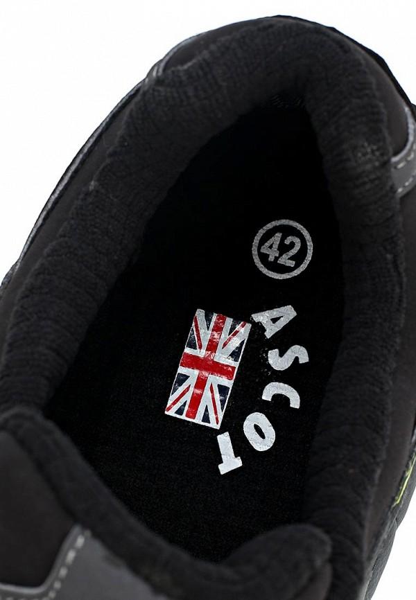 Мужские кроссовки Ascot SJ 1605 TRANSILVANIA: изображение 12