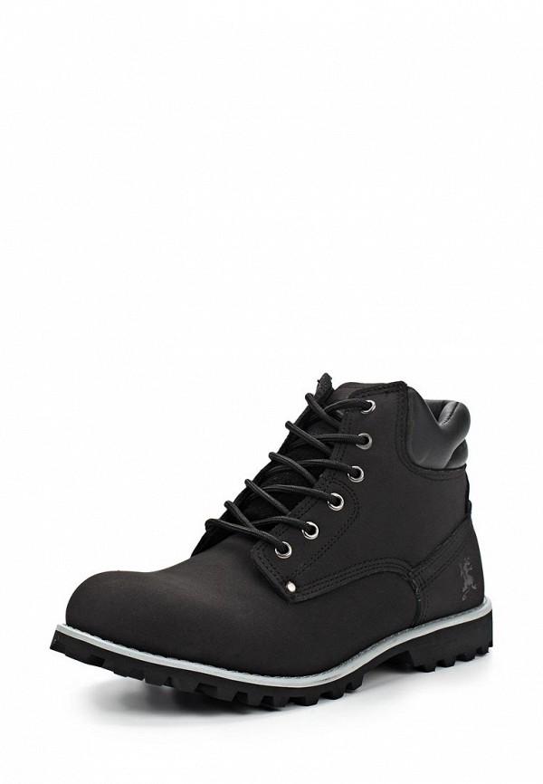 Мужские ботинки Ascot SH 2687-021M STAMFORD: изображение 1