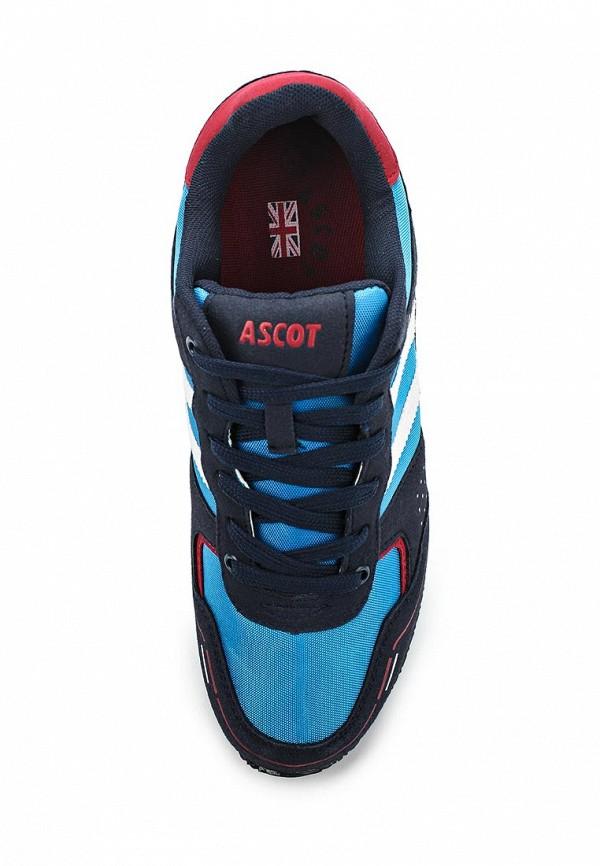 Мужские кроссовки Ascot SJ 3070-06 JESS: изображение 4