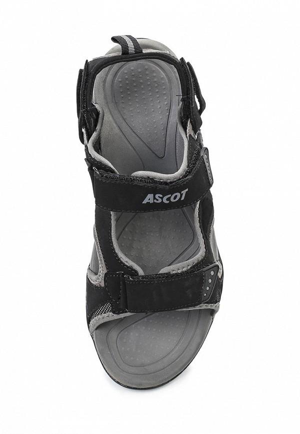 Мужские сандалии Ascot SL 9390 CAMEL: изображение 4