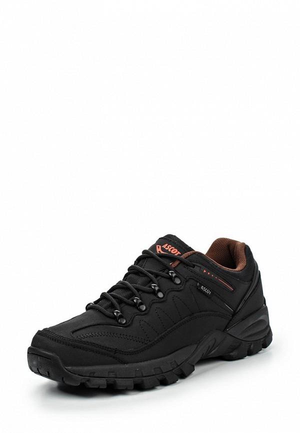 Мужские кроссовки Ascot (Аскот) SH 2500-01 ALPINE