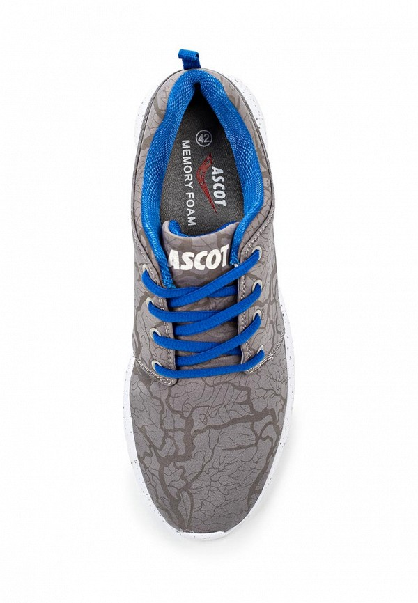 Мужские кроссовки Ascot (Аскот) SJ 3093-02 WEST COAST: изображение 4