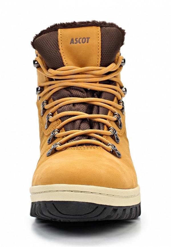 Мужские ботинки Ascot ST 0210-01 PITER: изображение 5