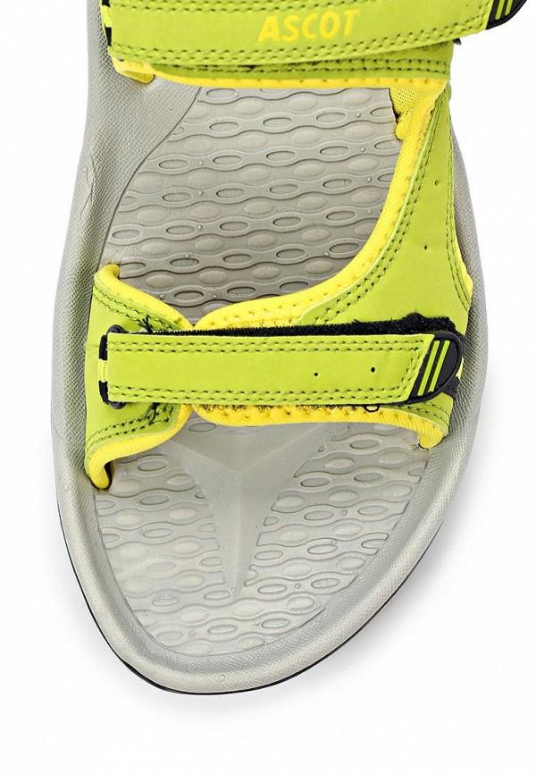 Женские спортивные сандалии Ascot SL 9373 TULIP: изображение 11