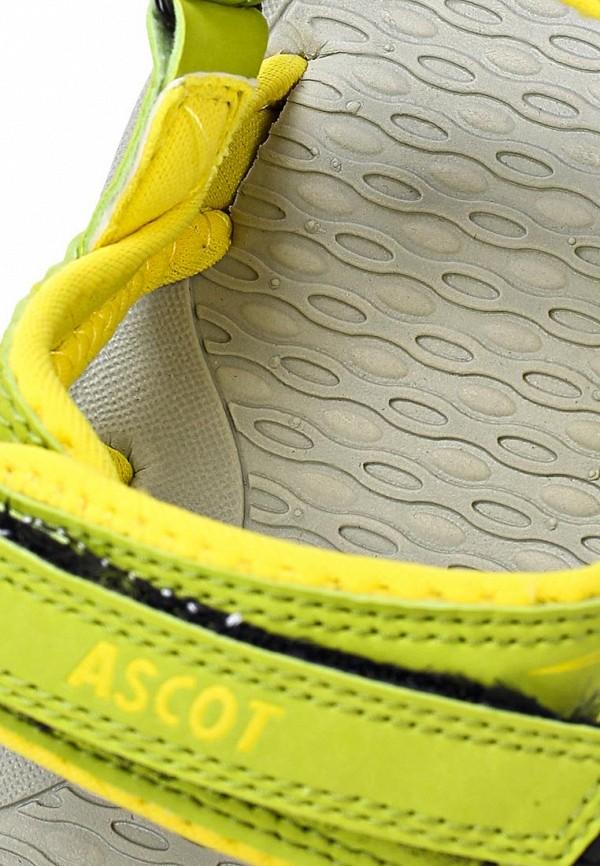 Женские спортивные сандалии Ascot SL 9373 TULIP: изображение 13