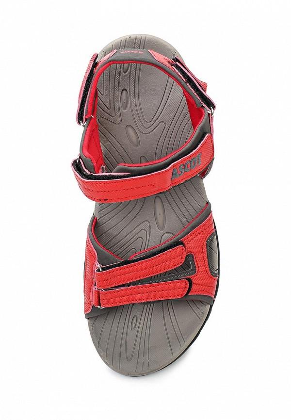 Женские сандалии Ascot SL 9370-03 VIPER: изображение 4