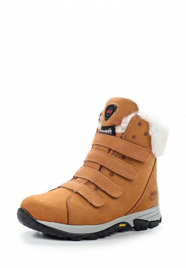 Фото Ботинки Ascot. Купить с доставкой