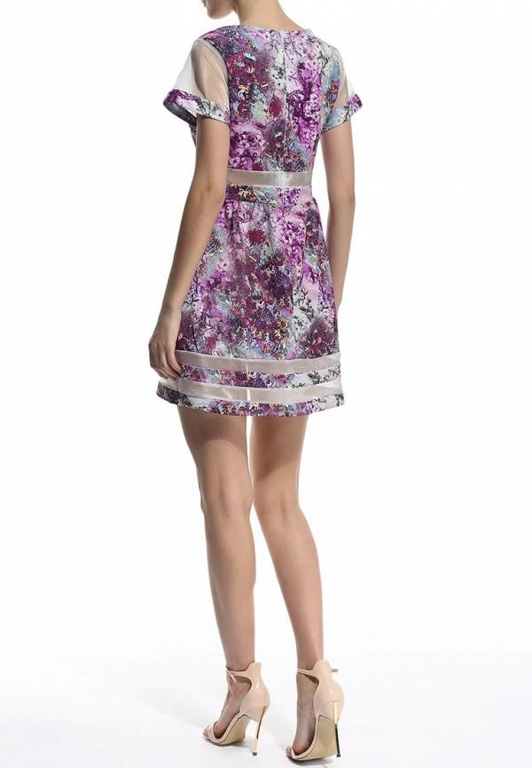 Платье-мини Aurora Firenze 2998: изображение 4