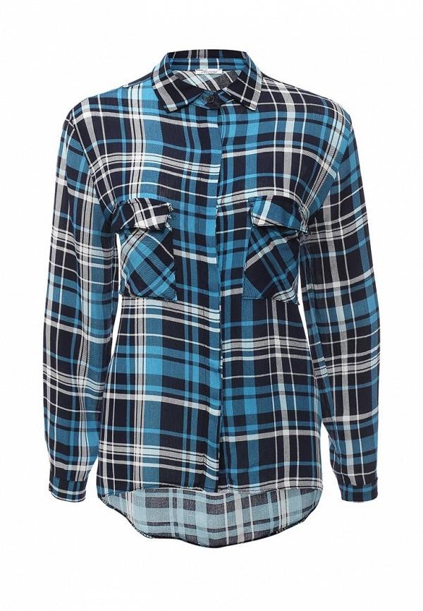 Рубашка Aurora Firenze S24-6027: изображение 1