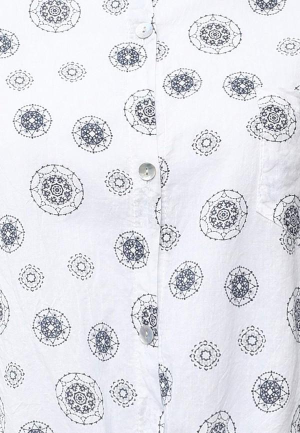 Рубашка Aurora Firenze S14-6126: изображение 5