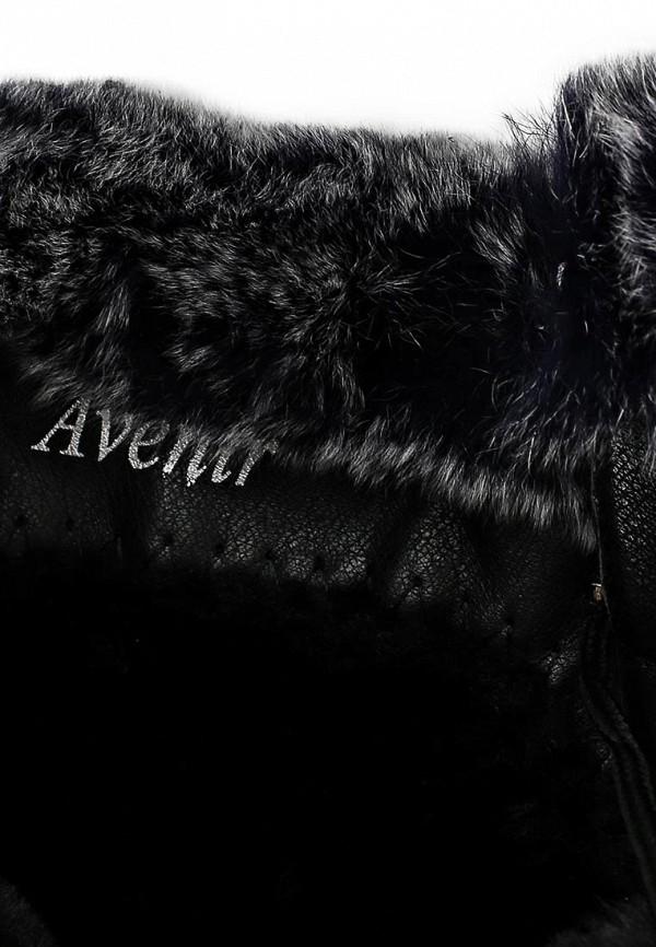 Женские ботинки Avenir 2322-JN53745T: изображение 5