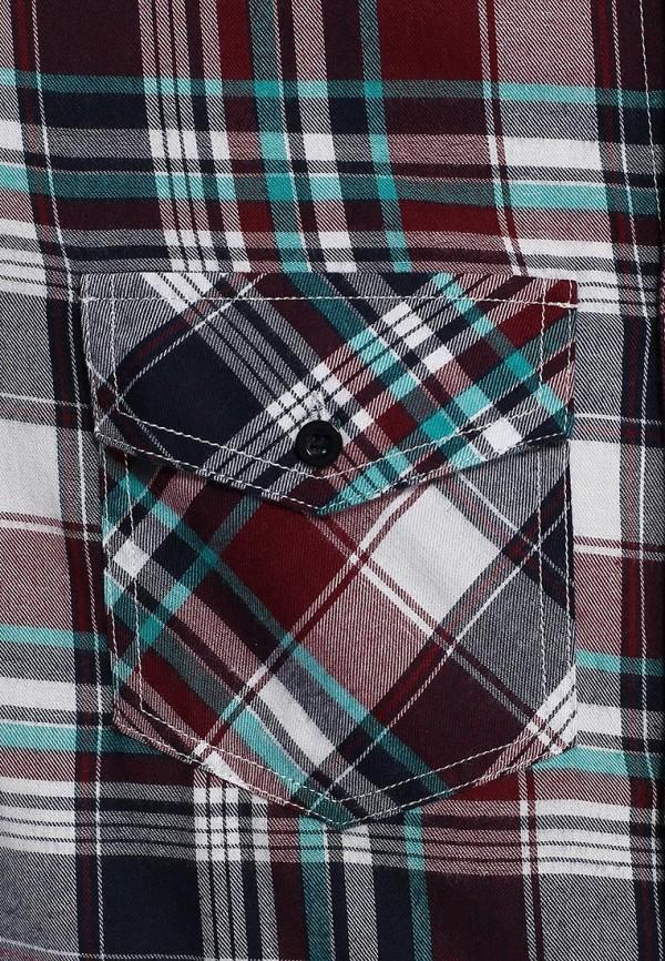 Рубашка с длинным рукавом Baon (Баон) B664514: изображение 3