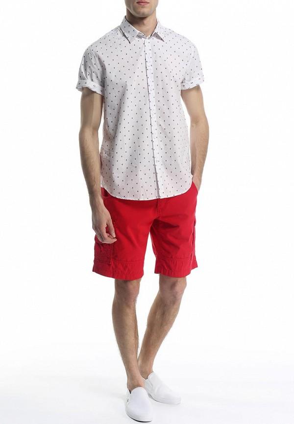 Мужские повседневные шорты Baon (Баон) B825404: изображение 3