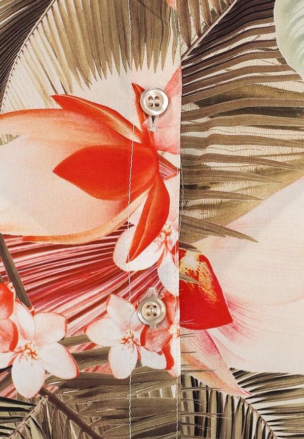 Блуза Baon (Баон) B194006: изображение 5