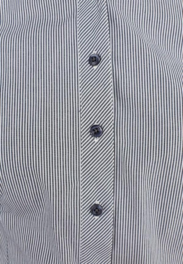 Рубашка Baon (Баон) B173702: изображение 2