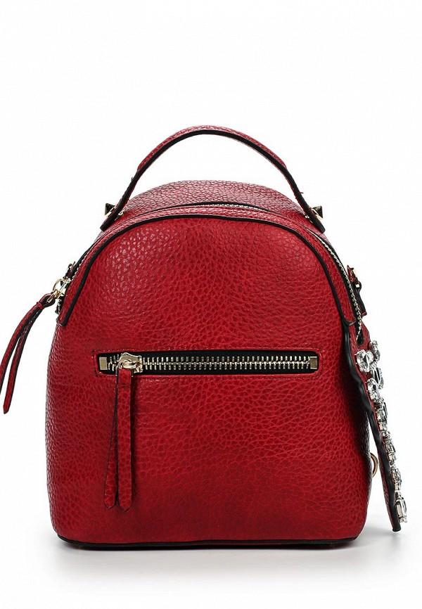 Городской рюкзак Baggini (Баггини) 29306/65: изображение 1