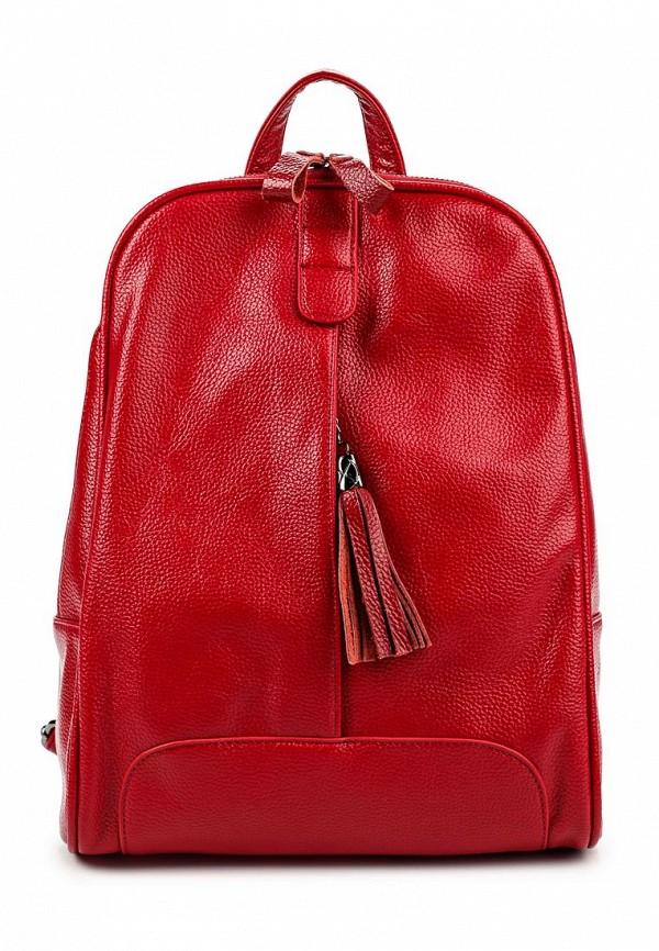 Городской рюкзак Baggini 29847/69