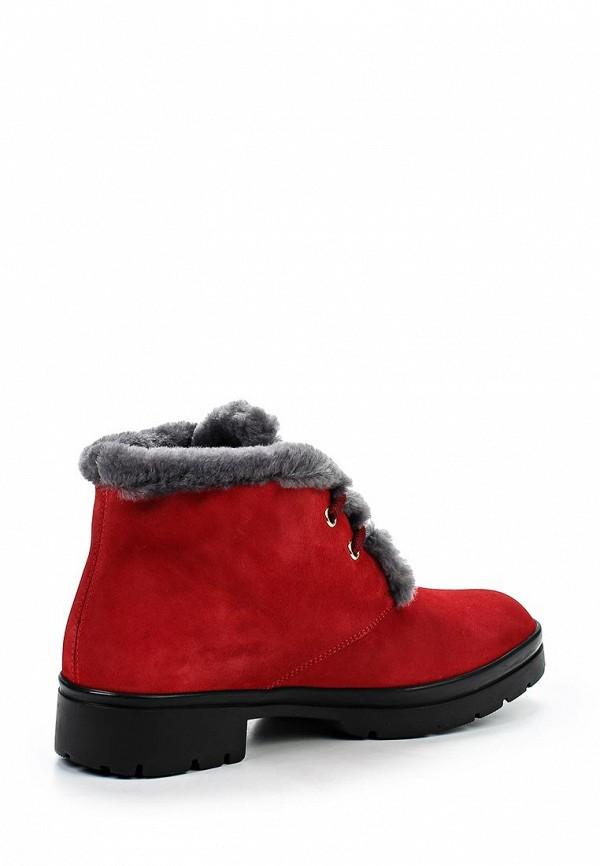 Женские ботинки Baldinini (Балдинини) 649352ACAMO79....R..: изображение 2
