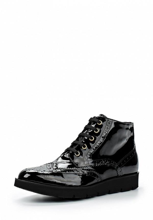 Женские ботинки Baldinini (Балдинини) 649221TVERN00....R..: изображение 1