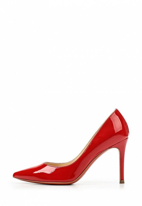 Туфли на шпильке Baldinini (Балдинини) 652123P91ATOSC7000: изображение 2