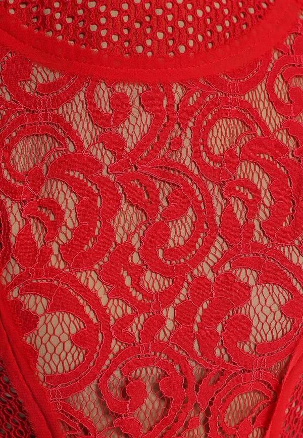 Платье-миди BCBGMAXAZRIA LSM68C16: изображение 2