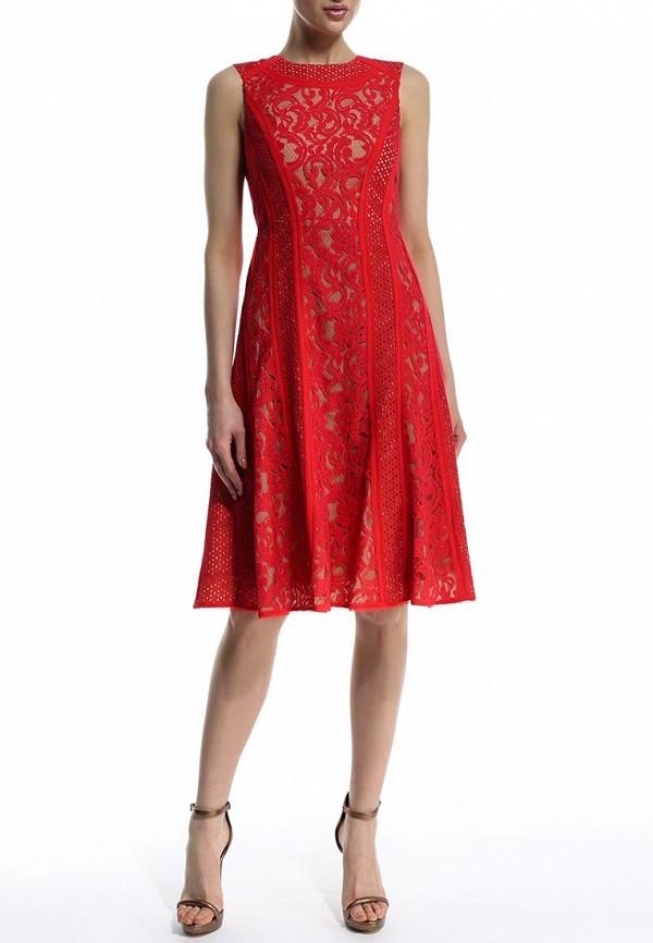 Платье-миди BCBGMAXAZRIA LSM68C16: изображение 3