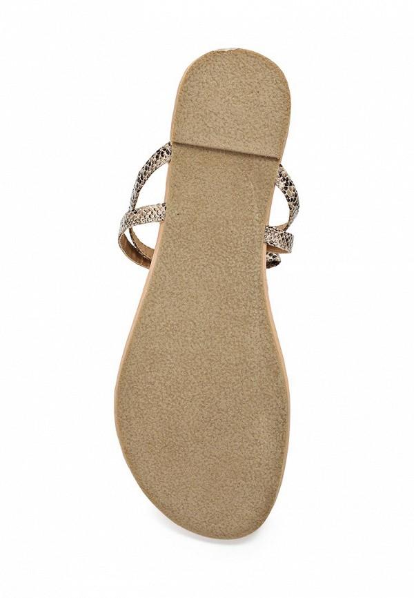 Женские сандалии Bebe (Бебе) B01US1010000: изображение 3