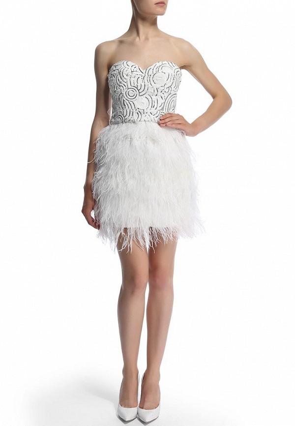Вечернее / коктейльное платье Bebe (Бебе) 70A5G101N520: изображение 5