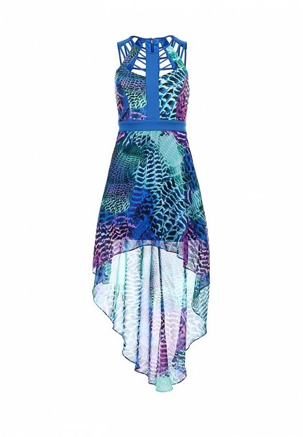 Платье-миди Bebe (Бебе) 70ETK101N646: изображение 1