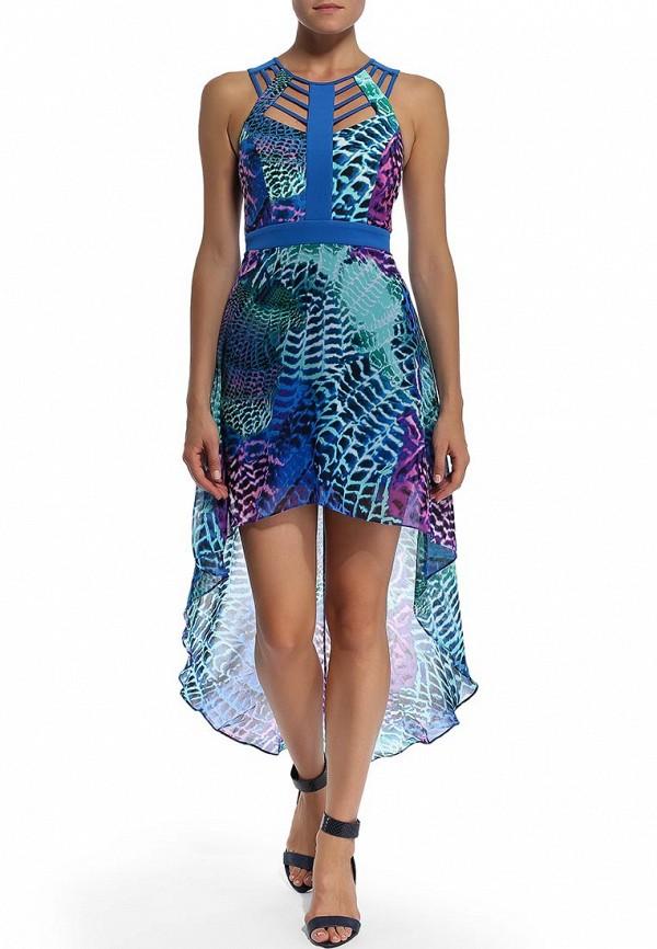 Платье-миди Bebe (Бебе) 70ETK101N646: изображение 5