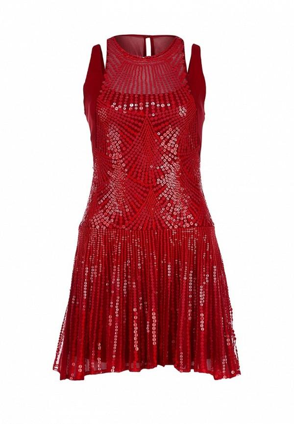 Платье-мини Bebe (Бебе) 70FPV102S760: изображение 1