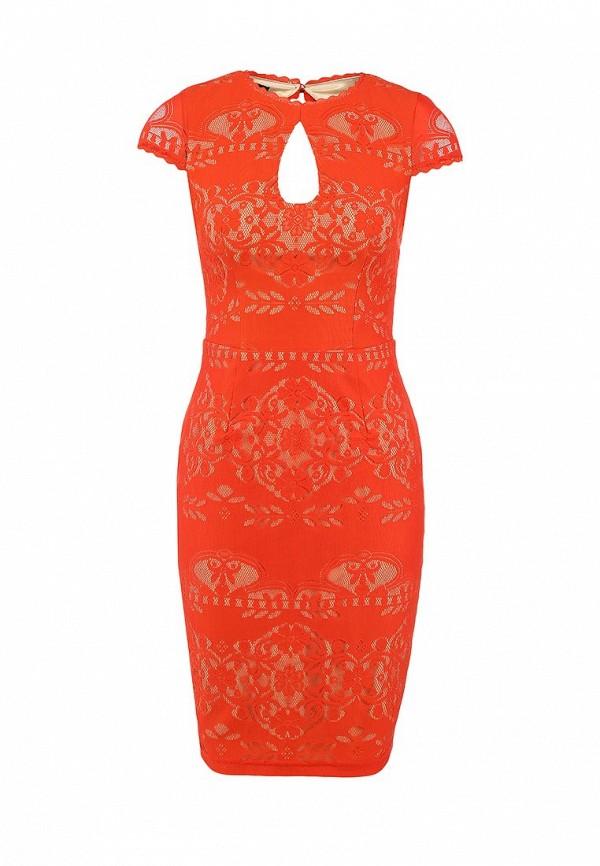 Платье-миди Bebe (Бебе) 70H8N1010000: изображение 1