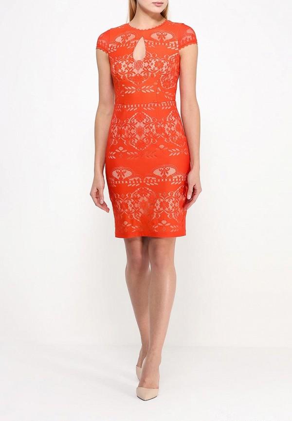 Платье-миди Bebe (Бебе) 70H8N1010000: изображение 2