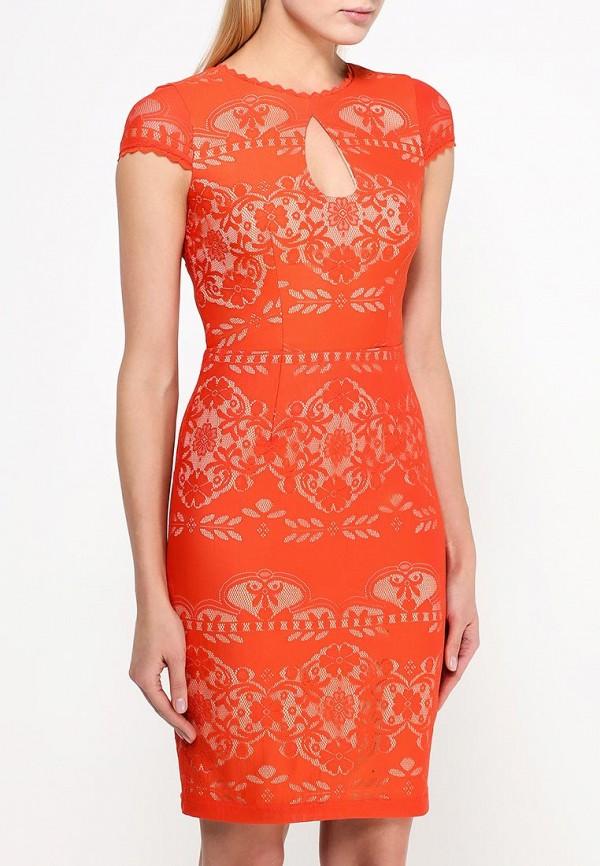 Платье-миди Bebe (Бебе) 70H8N1010000: изображение 3