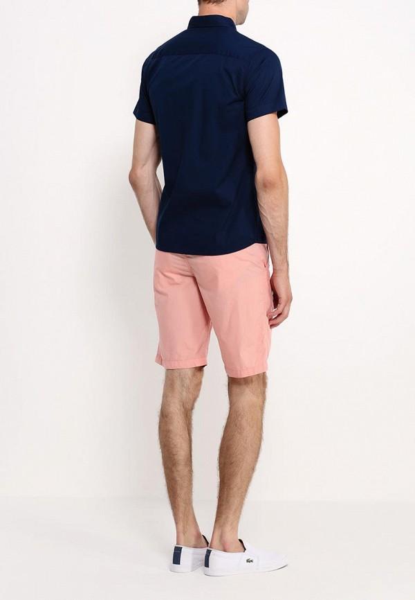 Рубашка с коротким рукавом Befree (Бифри) 529073310: изображение 5