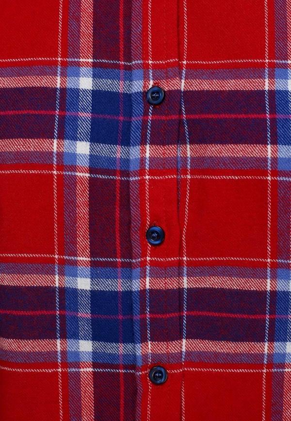 Рубашка Bestia 51900204: изображение 2