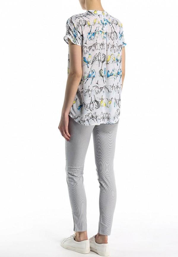 Блуза Bestia 51900271: изображение 4